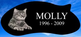 "#2728L Pet Marker Black Granite All Laser Etched Letters & Photo Size 16"" long X 7"" wide X 2"" thick"